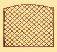 Krakta ogrodowa azurowa z lukiemi